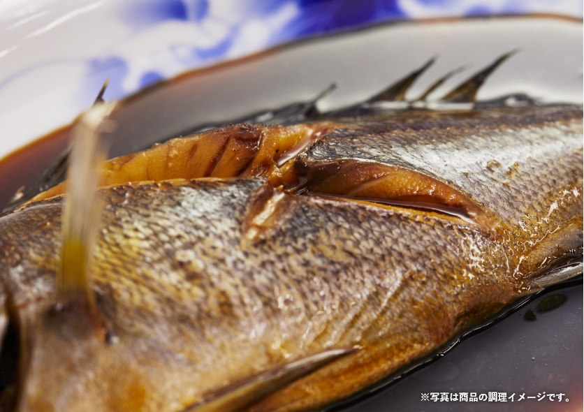 鮮魚 連 長崎 ボックス 県 漁